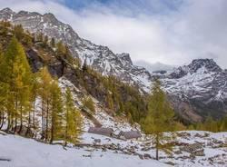 I colori dell\'autunno all\'Alpe Devero