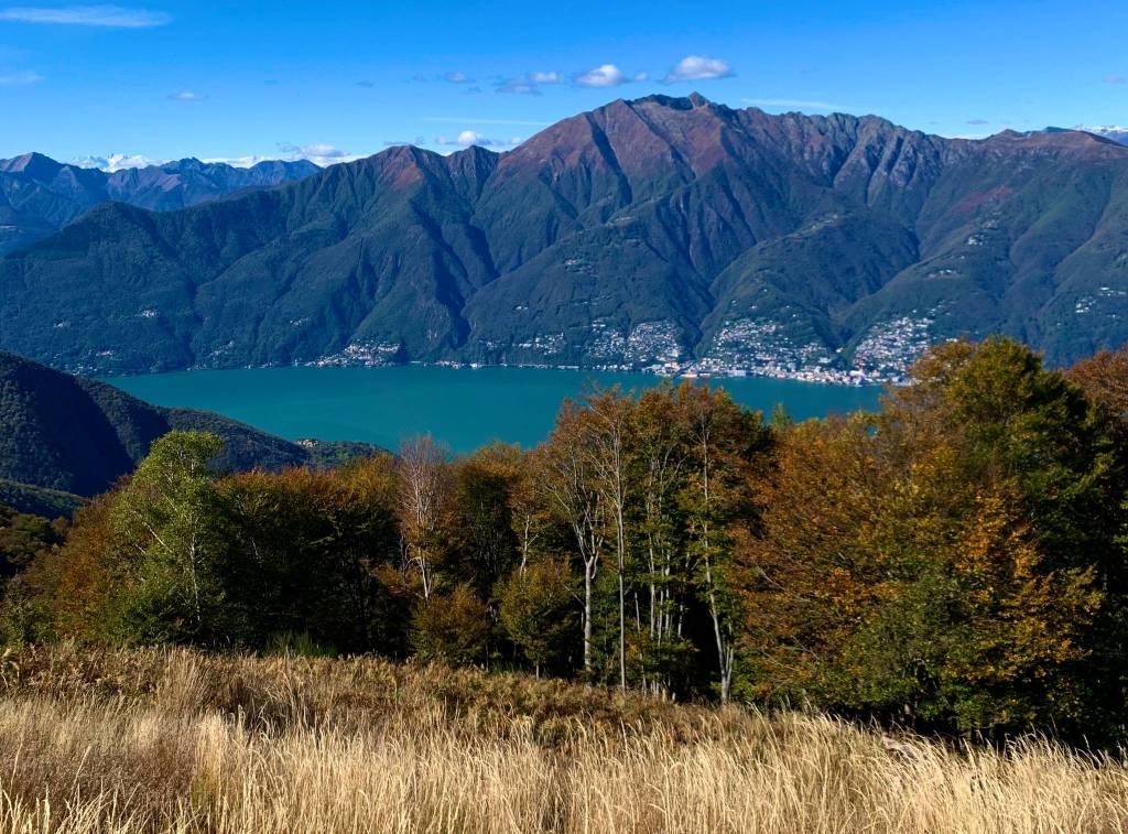 I colori dell'autunno sul Lago Maggiore