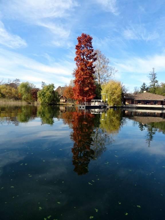 L'autunno all'Isolino