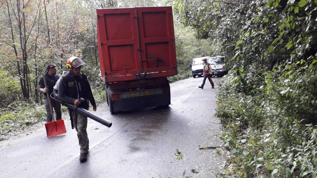 Maltempo: le operazioni per spostare l'albero caduto in via Piana di Luco a Varese