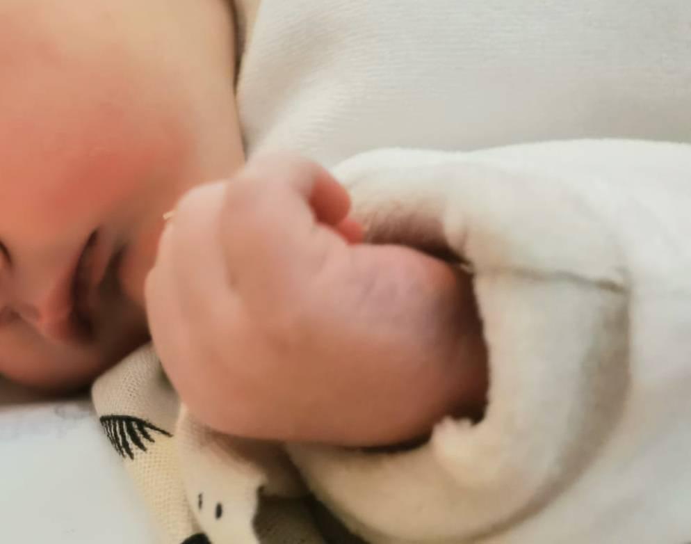nascita brando