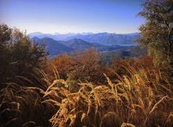Panorama dal Piambello - foto di Eleonora Martinelli