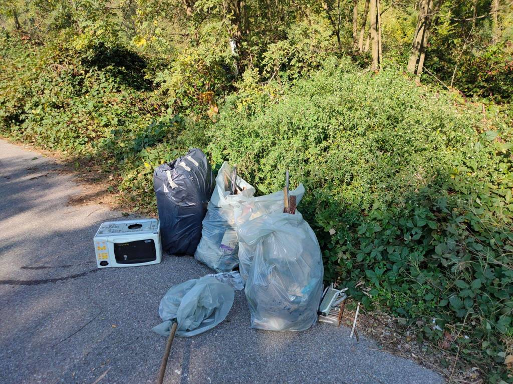 Strade Pulite ripulisce la Sp109 dai rifiuti