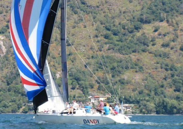 vela barca dandy