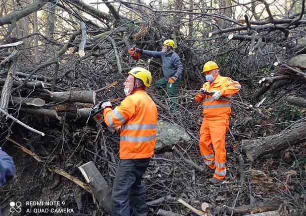Il lavoro nei boschi per liberare il sentiero 310B