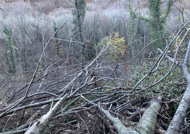 La devastazione alle pendici della Rocca di Orino