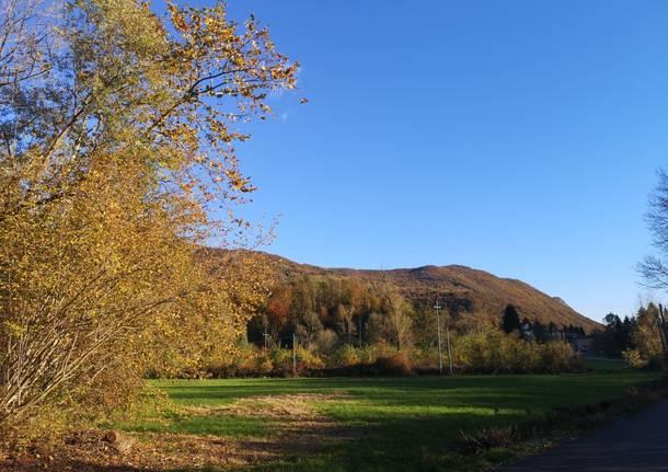 I colori dell'autunno sulla via Francisca