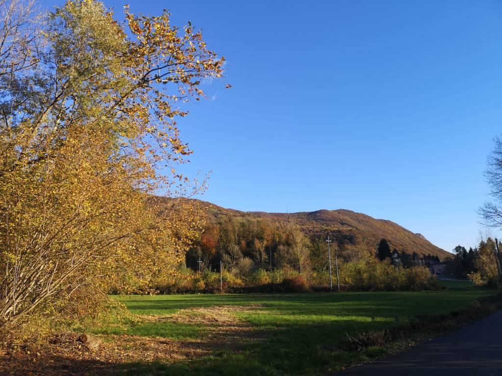 L'autunno sulla via Francisca
