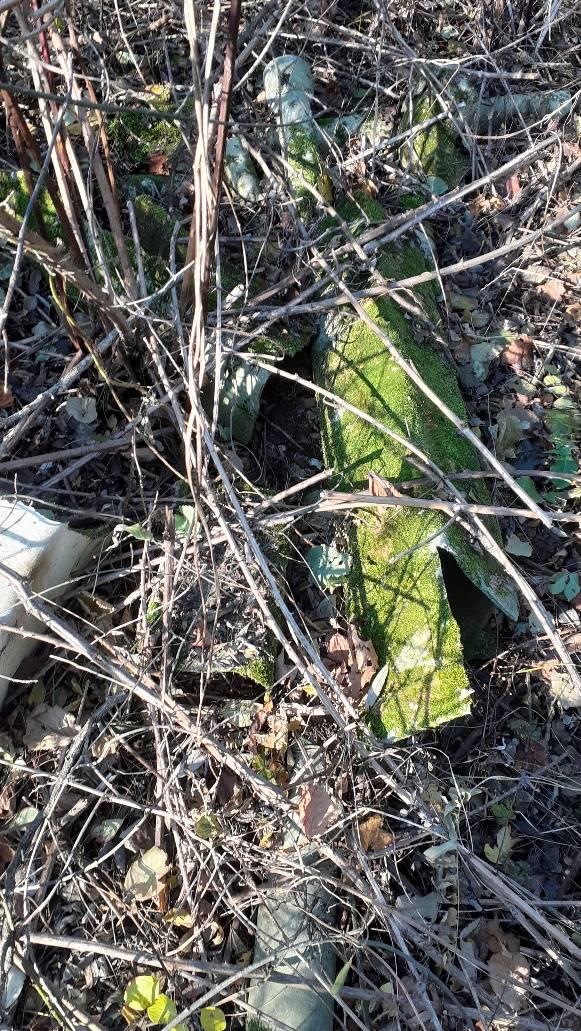 Spazzatura nei boschi di Brunello