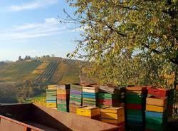 Wine tour tra i vigneti del Roero