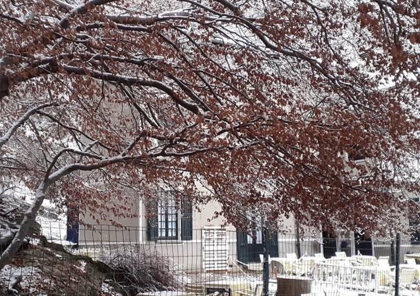 Basso Varesotto imbiancato dalla prima neve