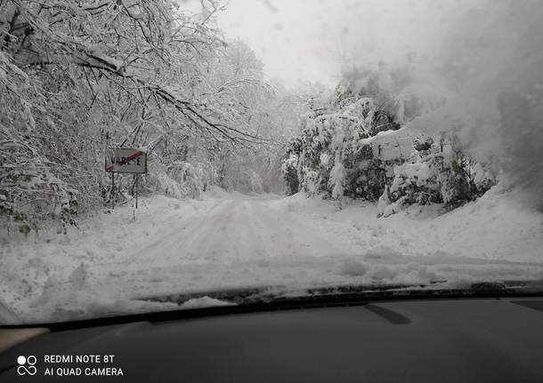 castiglione neve