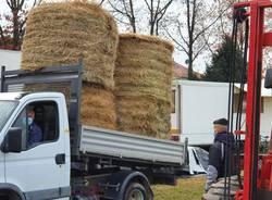 circo bloccato dal covid a cerro, associazioni e agricoltori corrono in aiuto
