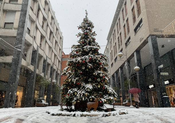 Il fascino della neve a Busto Arsizio