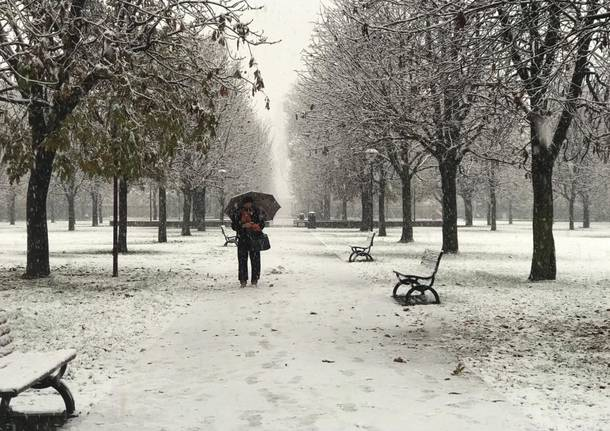 La neve sul Saronnese