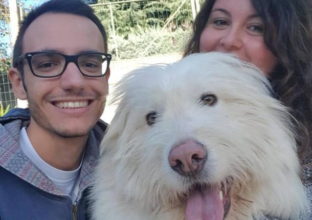 La nuova vita di Christmas, il cane salvato nei boschi in fin di vita