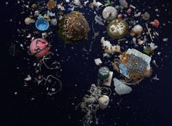 La vita degli abissi invasa dalla plastica nelle immagini di Mandy Barker