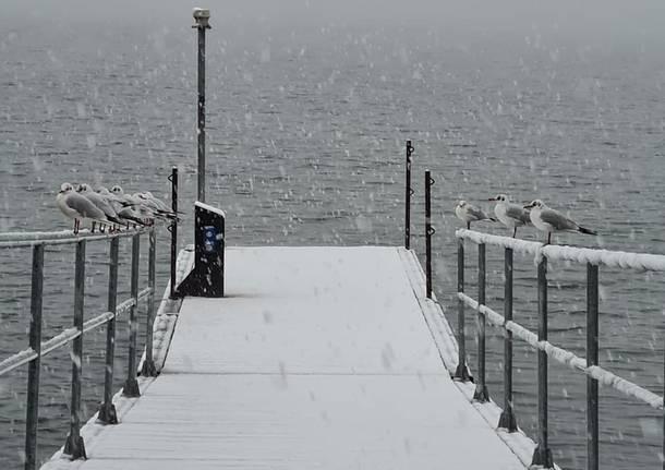 Lago di Varese, Cazzago sotto la neve