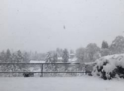 Neve Dicembre - Taino