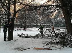 Neve sul Legnanese, rami caduti a San Giorgio e Canegrate