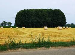 Verso la creazione di un Parco Agricolo Prealpino Sovracomunale da Lomazzo a Cislago. Sette sindaci a colloquio