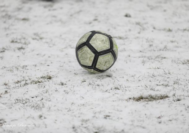 calcio lilla