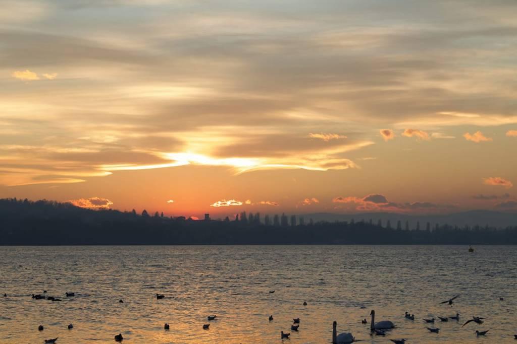 Il tramonto sul Lago di Varese alla Schiranna