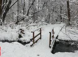 Lipu, inverno