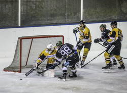 mastini varese hockey hc merano 2021