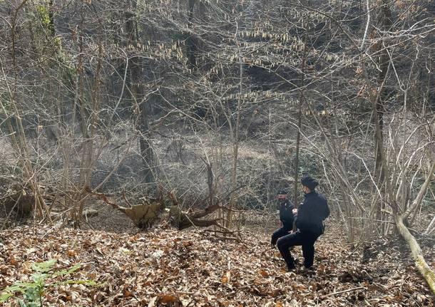 carabinieri vco bosco