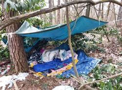 Guardie Ecologiche Volontarie e Parco ripuliscono il Piambosco