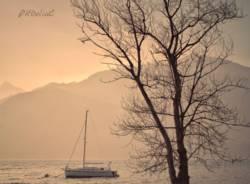 lago maggiore - Delia Ciocoiu