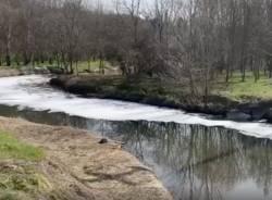 schiuma fiume olona 2021