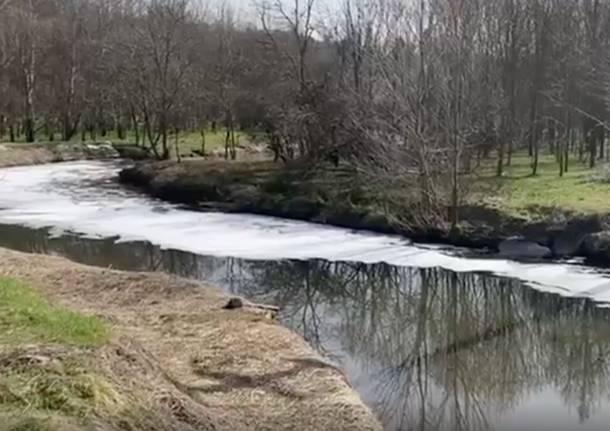 Distesa di schiuma bianca sul fiume Olona