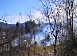 L\'incendio boschivo di Cugliate Fabiasco