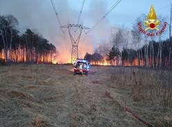 incendio parco delle groane