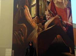 L'opera di Ravo all'ospedale di Varese