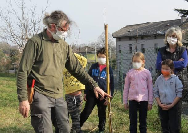 Pratiche scolastiche di biodiversità e sostenibilità a Morosolo