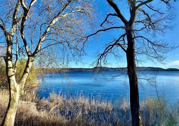 Lago di Varese da Gavirate