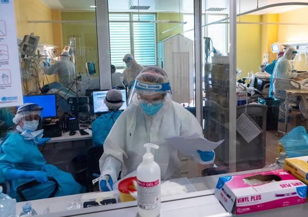 niguarda coronavirus