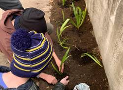 orto e giardino sensoriale alla primaria di Cazzago
