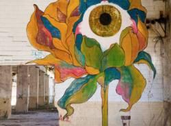 Saronno, all'ex Isotta Fraschini i murales dell'artista casertano Antonio Zolta