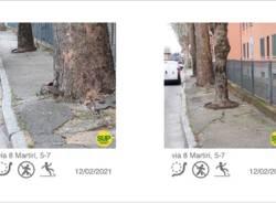 segnalazione spazio urbano pedonale busto arsizio