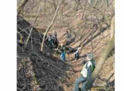 volontari bosco Lonate Pozzolo