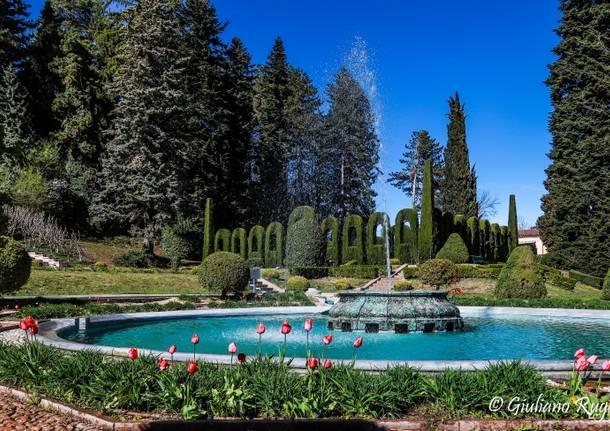 I colori della primavera in Villa Toeplitz  a S.Ambrogio Varese
