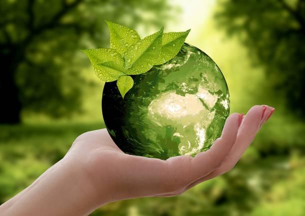 economia circolare riciclo - Foto di anncapictures da Pixabay