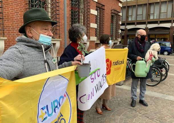 +Europa e radicali in sostegno a Walter