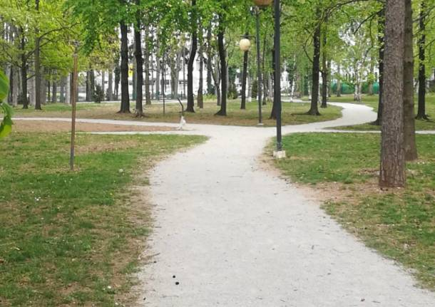 lavori parco platani castellanza