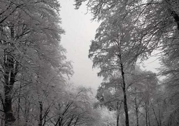 L'ultima neve di primavera