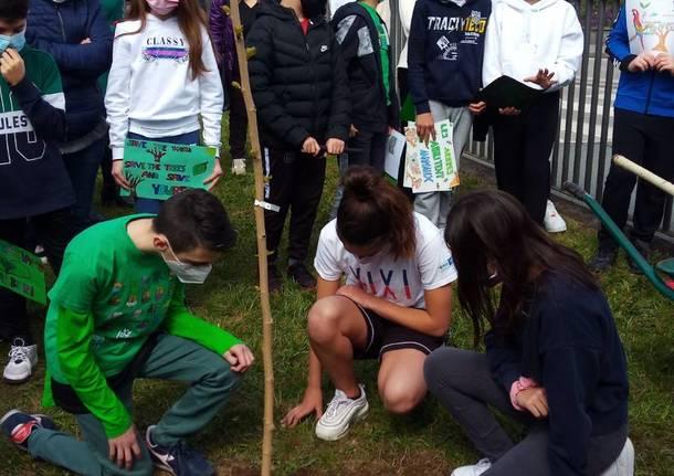 I ragazzi di Buguggiate piantano un Gelso con Green School